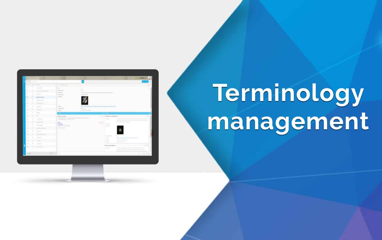 Detailed Terminology Management by Wordbee
